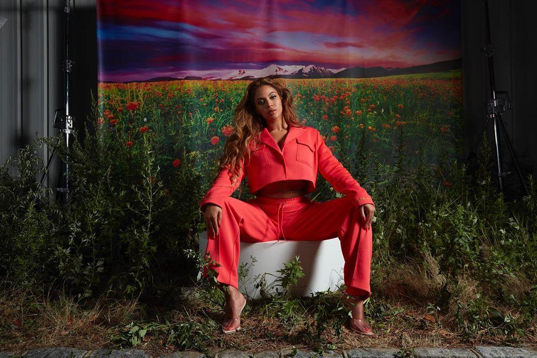 Beyoncé tem 80 mil abelhas em casa