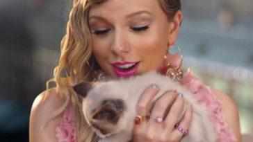 Taylor Swift compartilha conversa com seu gatinho